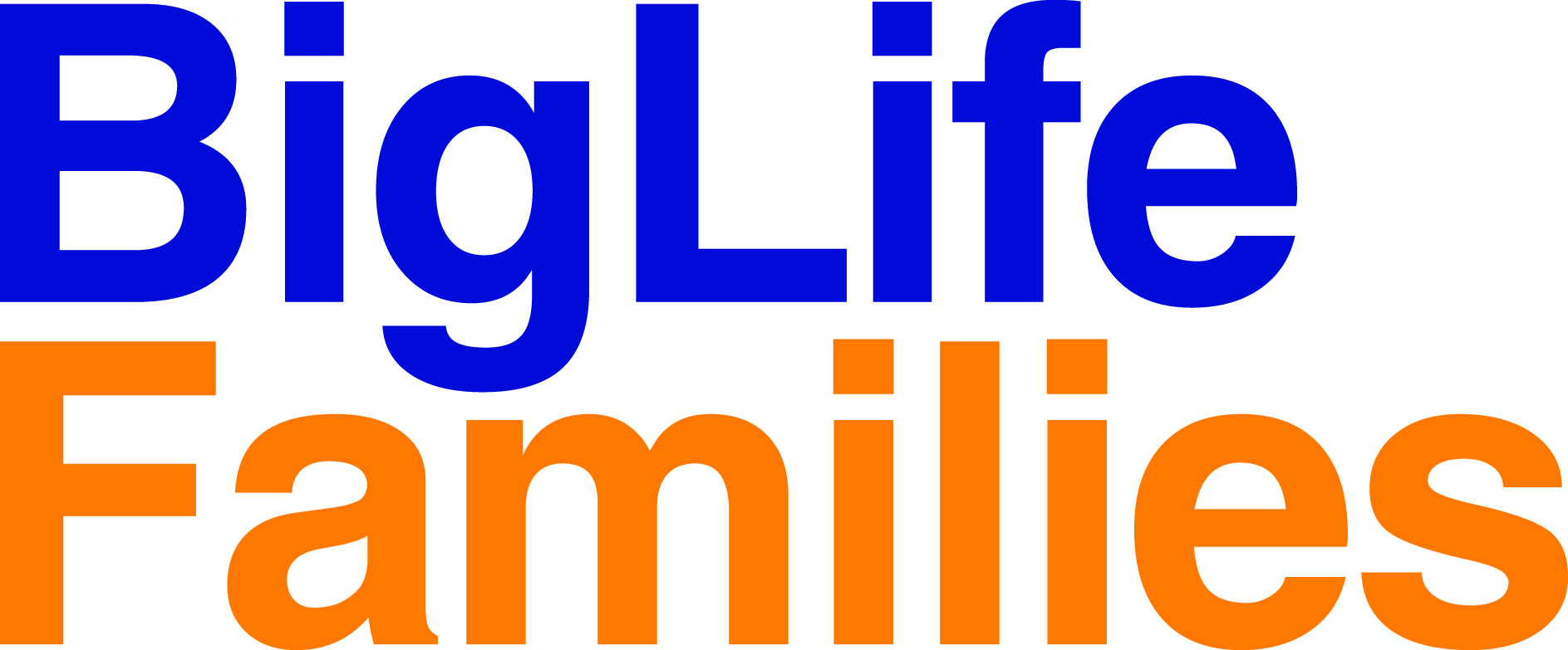 View all Big Life Families jobs